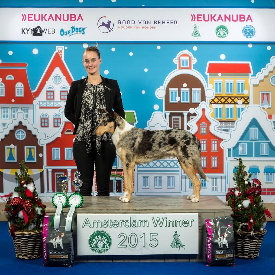 Winner NL 2015